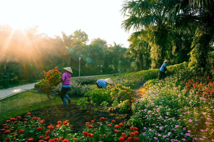 Chung cư Rừng Cọ Ecopark
